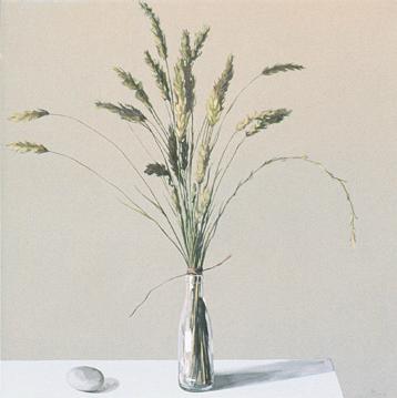 Espigas, 2004