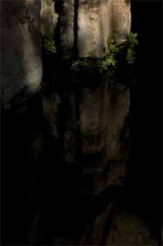 11-pedro-monjardin