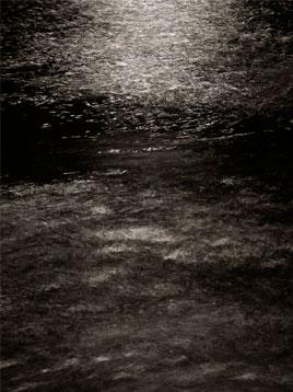 Sin Título Fotografía digital impresa con tintas pigmentadas 60X40 cm.