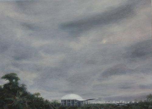 Gorra de Niemeyer – 51 x 70 óleo/lienzo – 2012