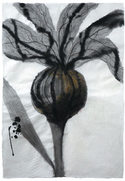 BotanicalPoems 55. 2008 Técnica Mixta sobre papel hecho a mano 94 x 65 cm.