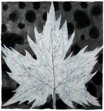 BotanicalPoems 17. 2008 Técnica Mixta sobre papel hecho a mano en China. Políptico 97 x 288 cm.