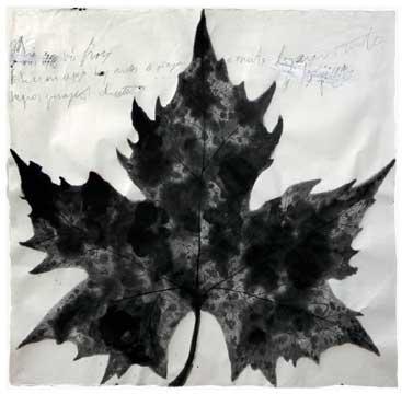 BotanicalPoems 46. Así me vi en este espejo hoy antes de viajar a Oriente lejano, negros presagios dentro. 2008 Técnica Mixta sobre papel hecho a mano en China. 96 x 99 cm.