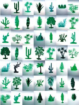 Ciuco Gutiérrez Las plantas (2002). Fotografía, 160 x 120 cm.