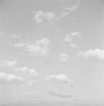 S/T, 2007  Gelatina de plata, Virada al  selenio 44 x 44 cm.