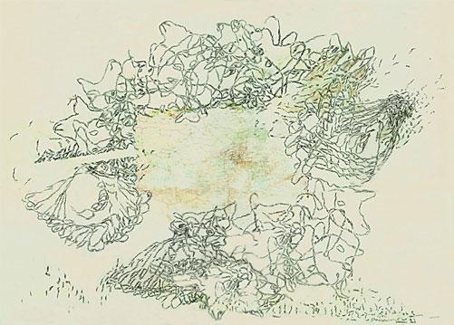 Tabulae Terrae 69 (2007), dibujo a lápiz y técnica mixta en dos caras sobre papel vegetal, 50 x 70 cm.