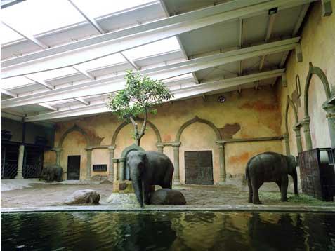 Tres elefantes en Hamburgo Copia Lambda sobre metacrilato con moldura de aluminio 90X120 cm. Tiraje: 5 + 1 P.A.