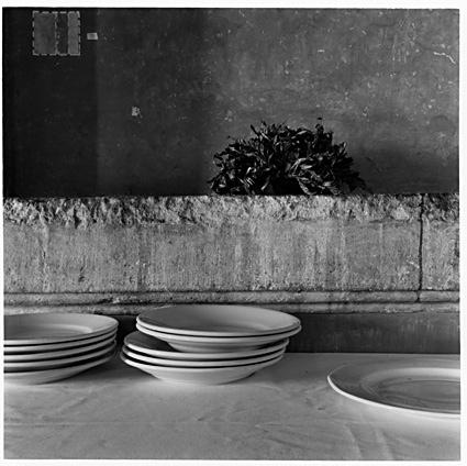 José Ferrero. Serie Roma S/T (Villa Medici 10) 2001,Papel Coloro-bromuro, virado al selenio , 44x44cm. 5/2