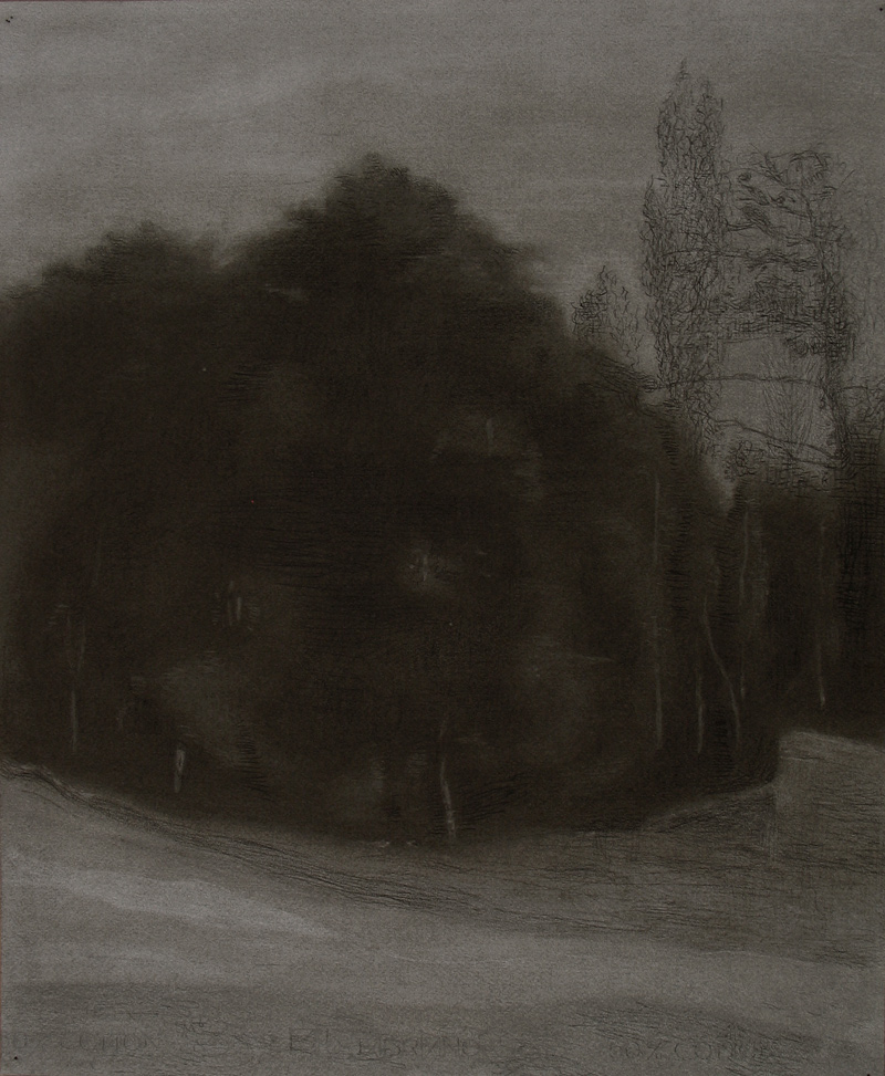 Miguel Galano. Ville d'Avray, 2006, carbón sobre papel, 60,5x50 cm.