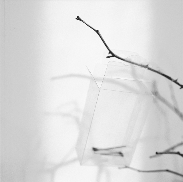 Erika Babatz Galgenvogel, 2010 - P.A. de la serie Tarde o temprano ,gelatina de plata,25x25 cm