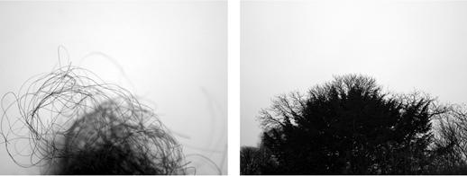 Ana Paula Martínez Lanz. Interludio I, 2009,  Impresión en papel de algodón con tintas pigmentadas, 60x110 cm.1/3