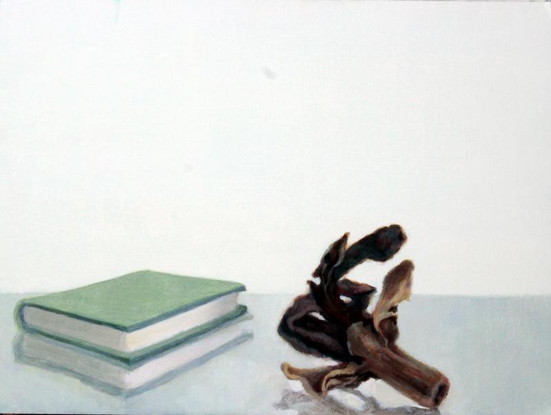 Libro y semilla oscura (2015). Óleo/cartón, 24 x 32 cm.