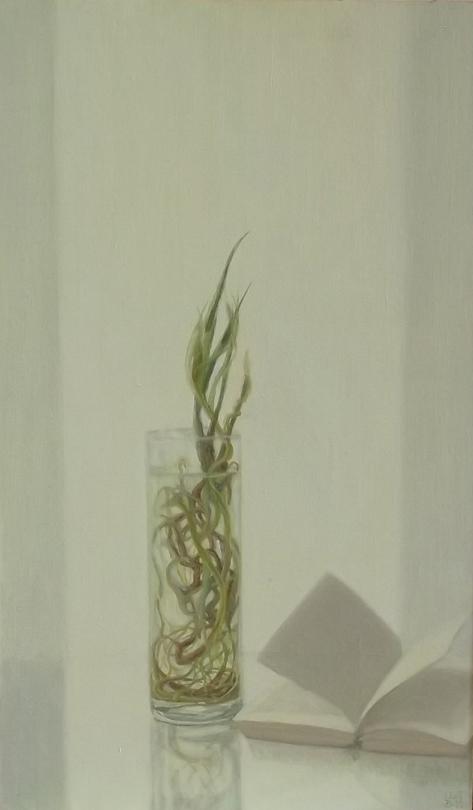 Raíces y libro (2011). Óleo/lienzo, 50 x 30 cm.