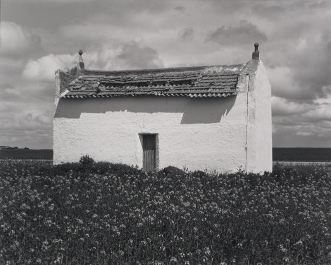 Palomar. Labajos, Segovia 2016, José Ramón Cuervo-Arango . 18,9x23,6. Gelatina de plata.
