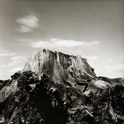 S/T,  1987 Fotografía analógica sobre papel de cloro bromuro 14 x 14 cm imagen (28 x 28 cm enmarcada)