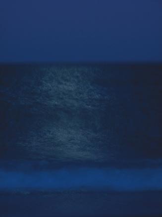 Pedro Monjardin  S/T, 2010, 90x120 cm   Fotografía Impresa con tintas pigmentadas sobre papel Hanhemühle fine art pearl de 285 gr