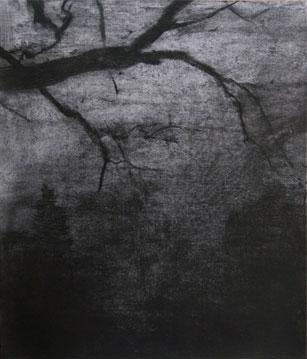 Recuerdo de Assisstens Kirkeegard, 2007 Heliograbado y punta seca 77,2X66 cm.