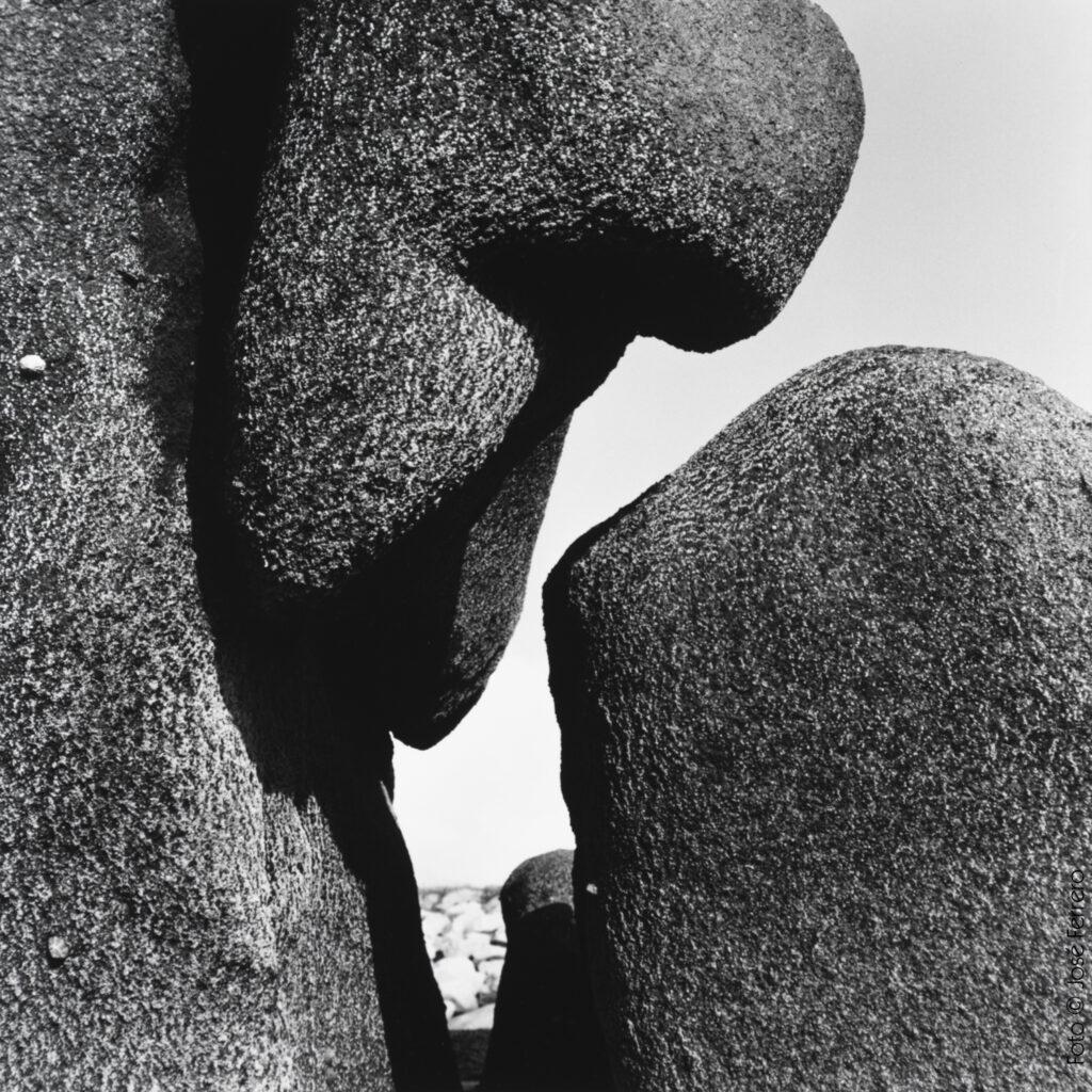 S/T, 2019.30x30cm (imagen 15x15cm).Fotografía analógica. Papel cloro-bromuro, virado al selenio.